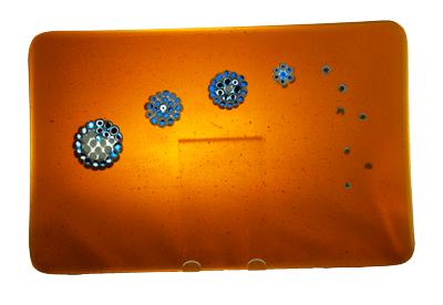 petals front view